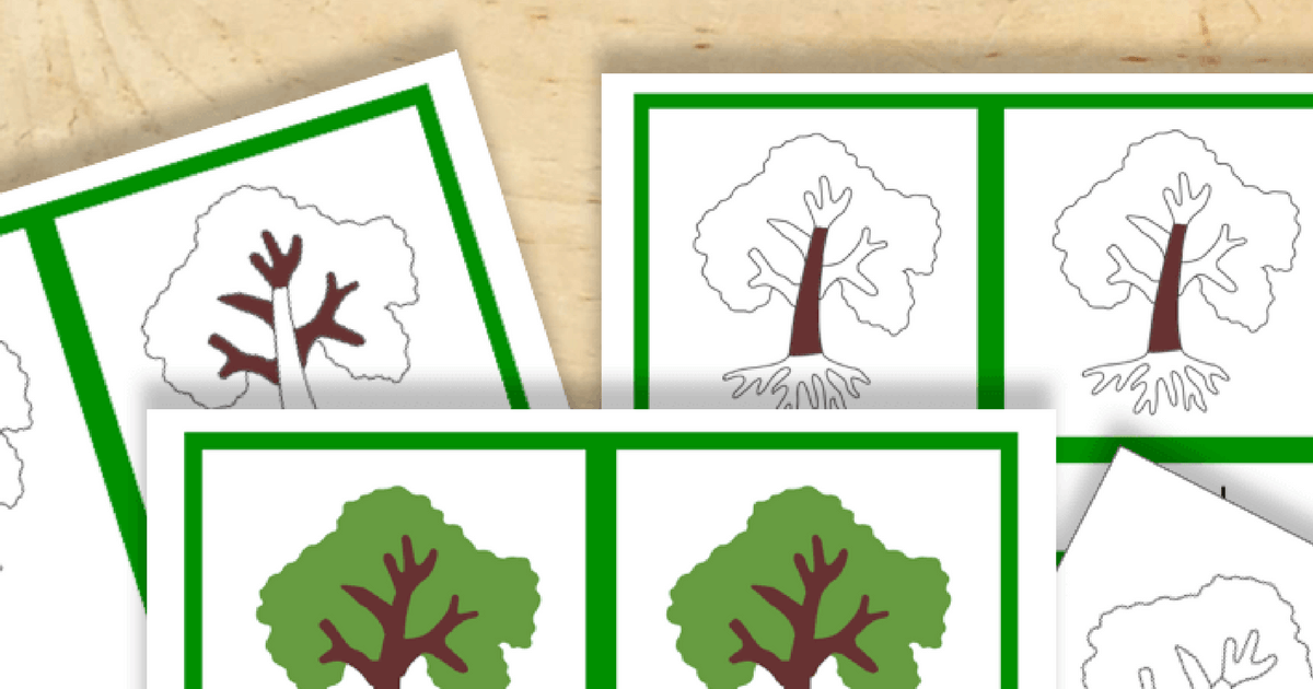 graphic about Free Printable Tree known as Absolutely free Montessori Printable Components of a Tree - Trillium Montessori