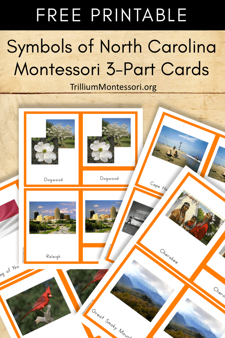 Free Printable Symbols of North Carolina Montessori 3 Part Cards