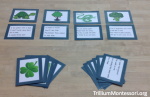 St Patricks Day Inferencing Question Cards