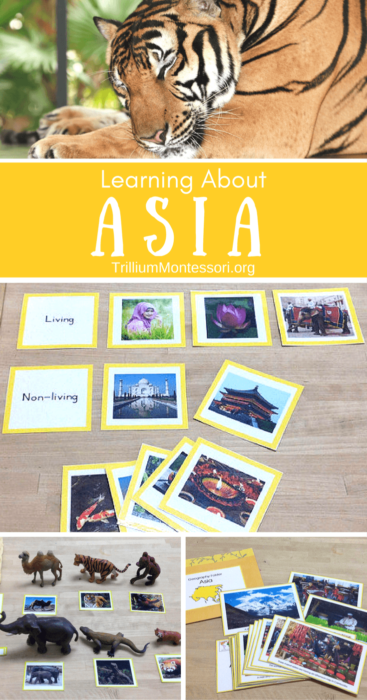 Preschool Activities for Learning About Asia