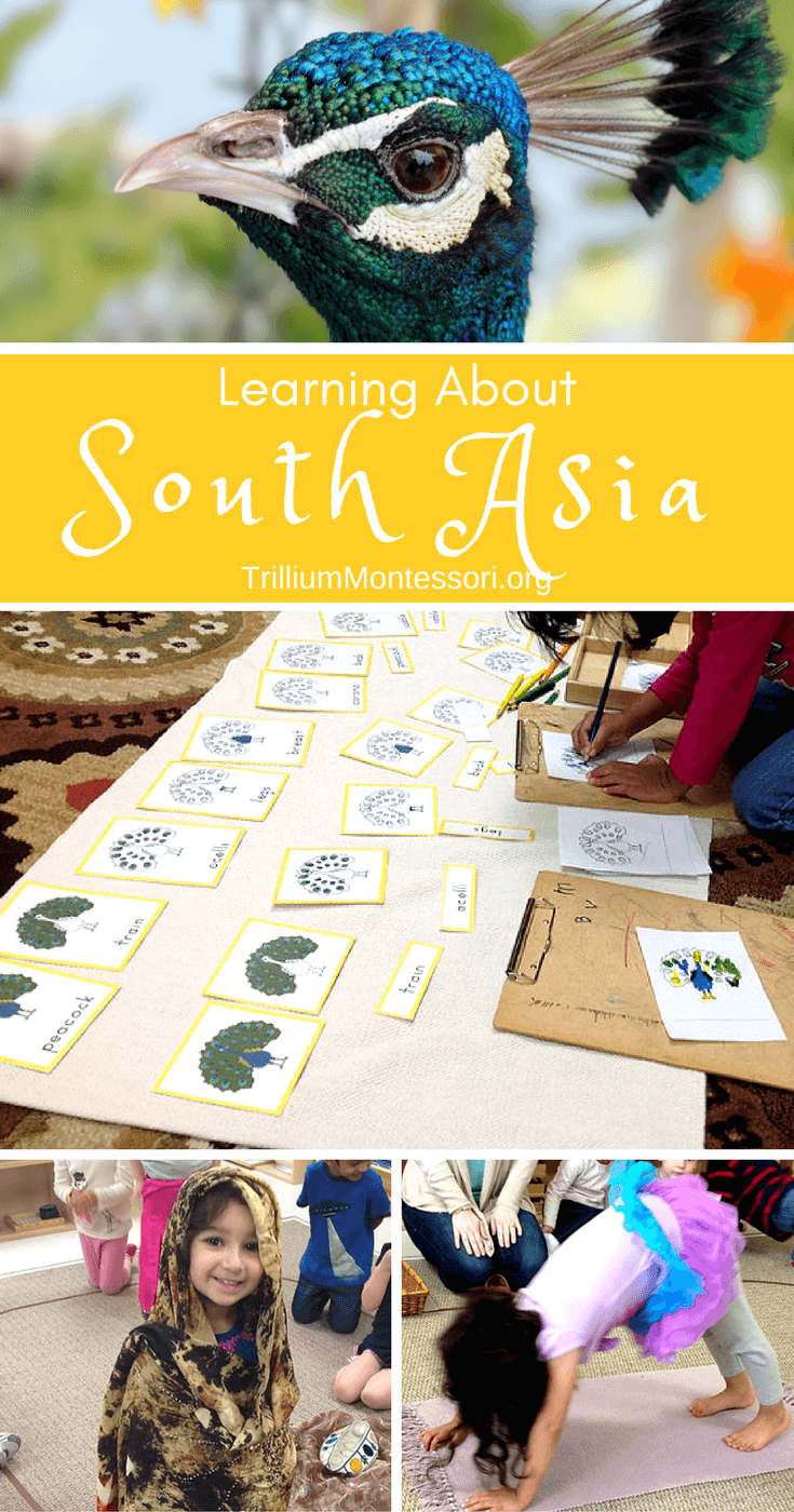Preschool activities for learning about South Asia