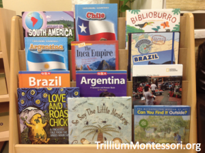Books for Children About South America