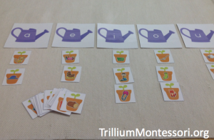 In the Garden Middle Vowel Sorting