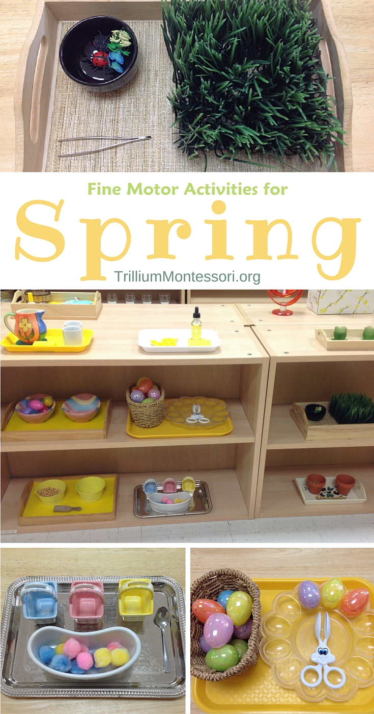 Fine motor activities for spring trillium montessori for Montessori fine motor skills