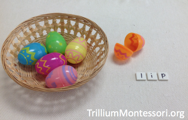Shelf Activities For Spring Trillium Montessori
