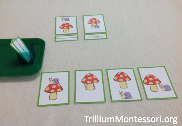 literacy activities for preschoolers pdf