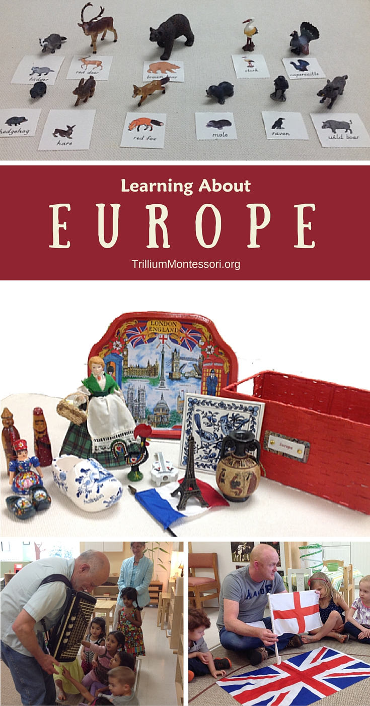 Learning About Europe