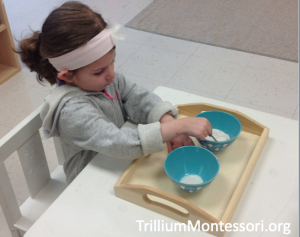 Beach theme fine motor activity spooning sand
