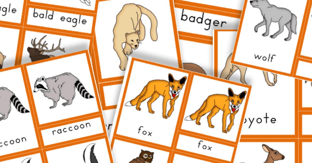 graphic about Printable Pictures of Animals known as Totally free Printable: Pets of North The united states - Trillium Montessori