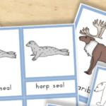 Free Printable Arctic Animals