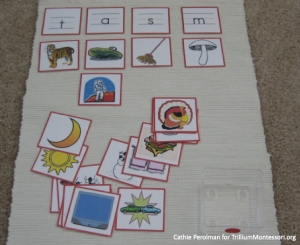 Cathie Perolman Initial Sound sort Pictures