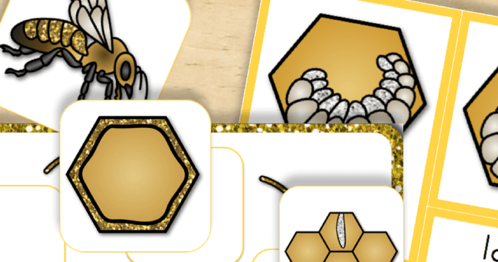 Free Printable: Life Cycle of a Honey Bee