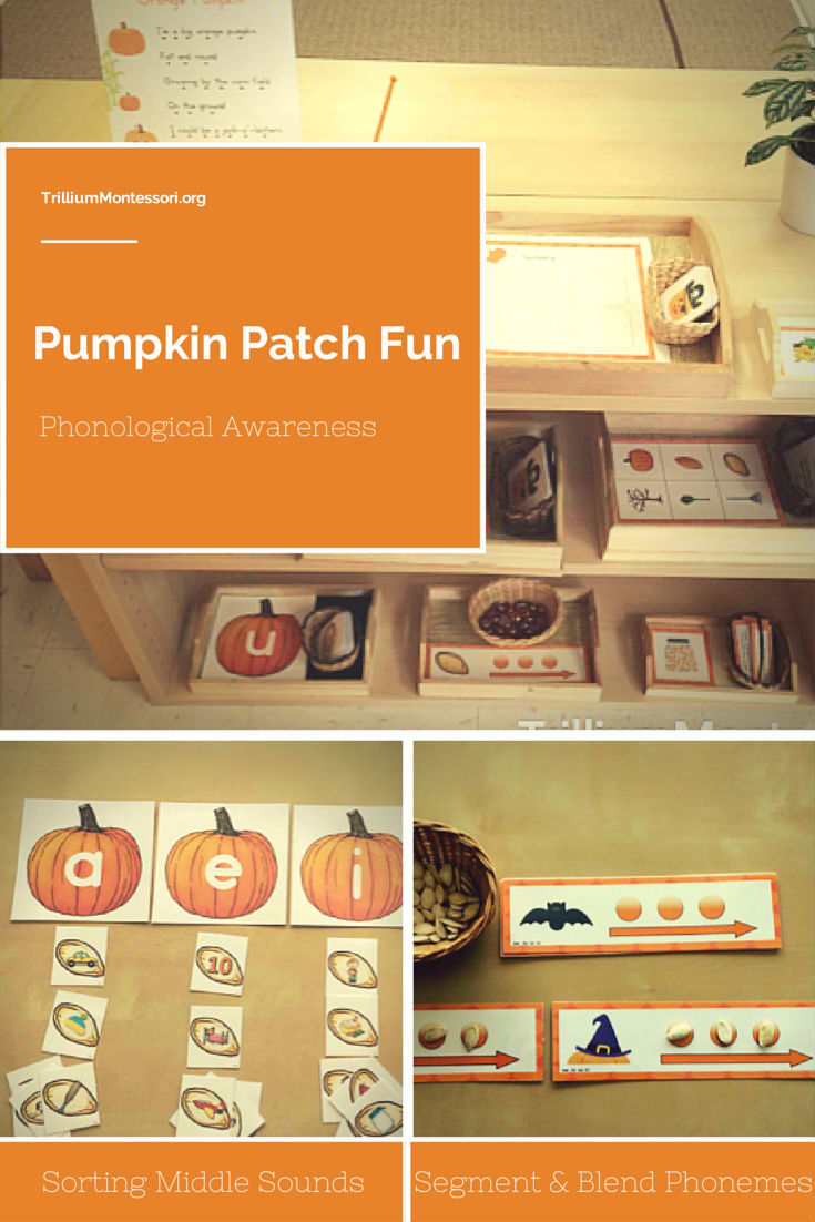 Pumpkin Patch Fun Phonological Awareness Activities