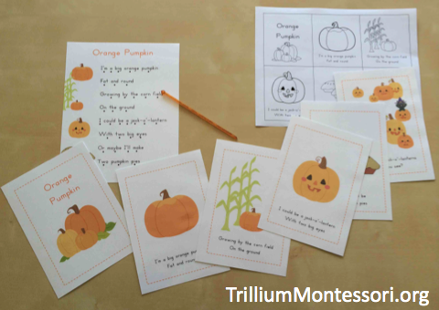 Pumpkin Patch Phonological Awareness Poem and Sequencing Cards