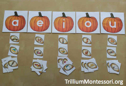Pumpkin Patch Phonological Awareness Sorting Middle Sounds