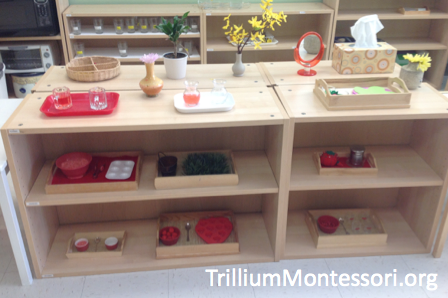 Strawberry Patch Fine Motor Activities