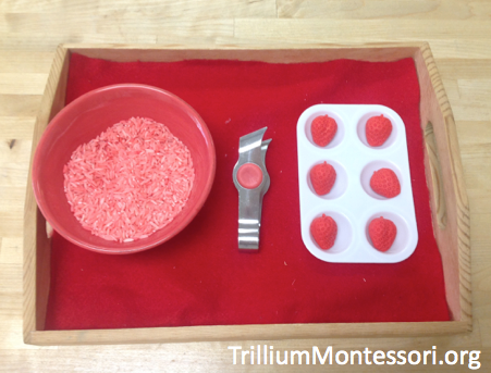 Strawberry Patch Fine Motor Tongs