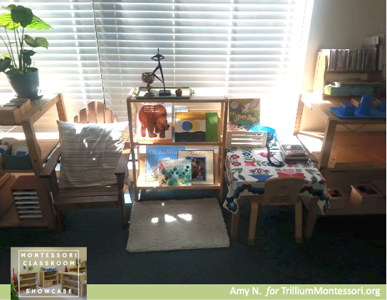 Montessori Classroom Showcase Series Book area and listening station