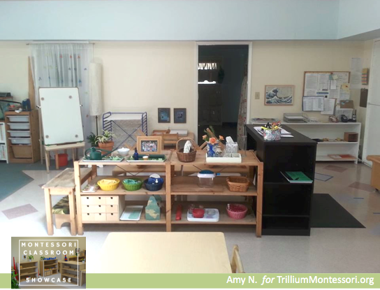 Montessori Classroom Showcase Series Practical Life
