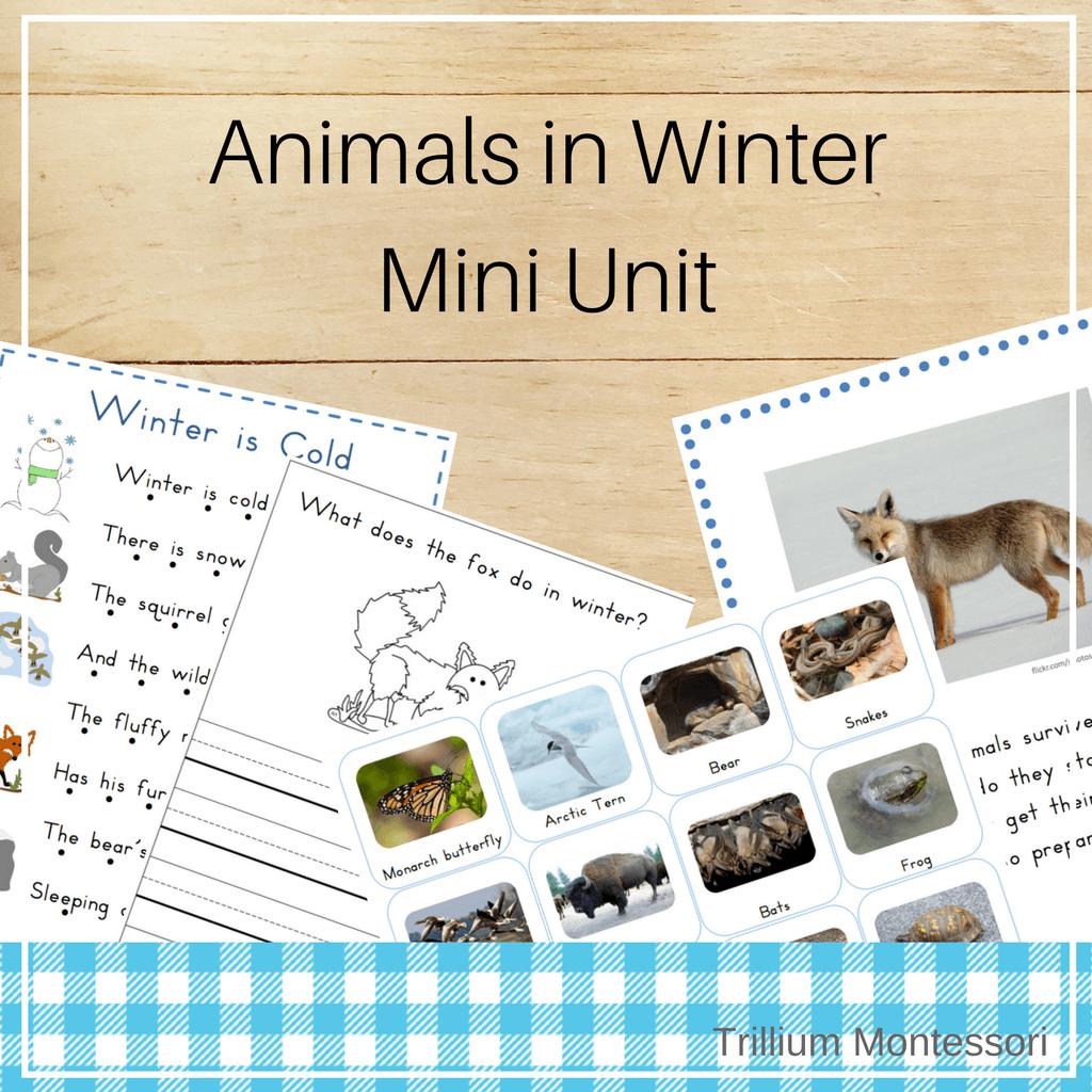 Animals in Winter Mini Unit