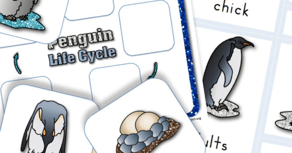 Free Printable Life Cycle of a Penguin. Great for preschool and early learners!