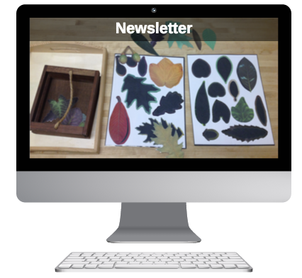 sign-up-for-the-newsletters