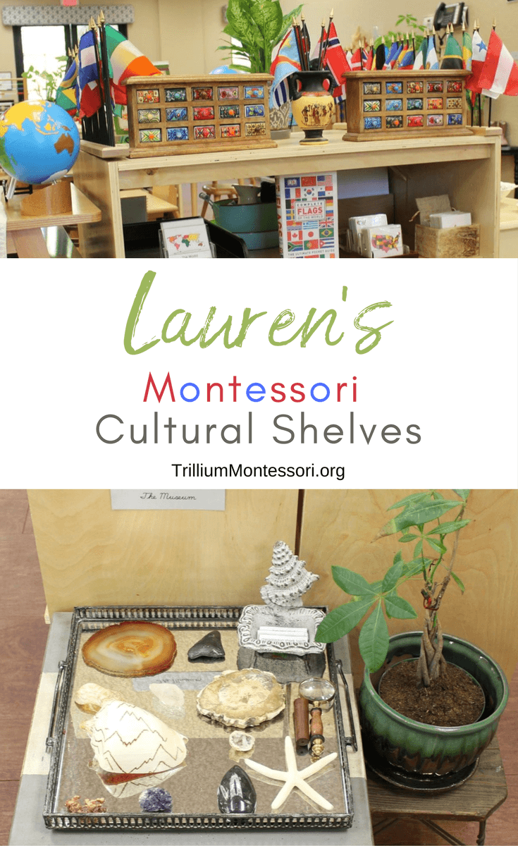 A tour of Lauren's Montessori science geography and cultural area