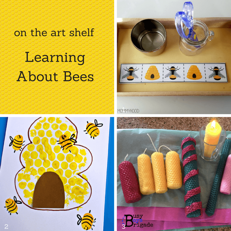 Learning About Bees - Trillium Montessori