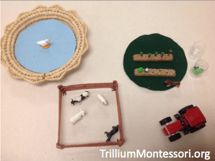 Preschool Activities for a Farm Theme