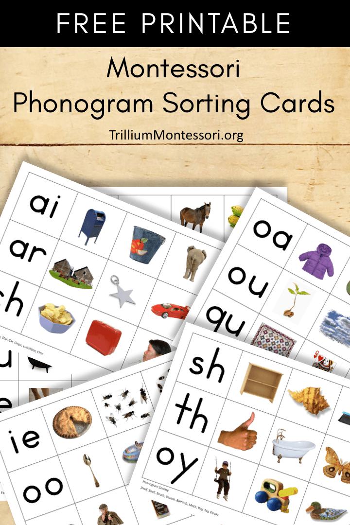 Free Printable Montessori Phonogram Sorting Cards