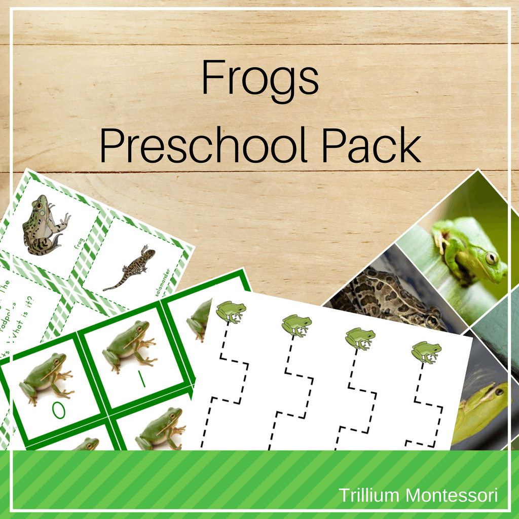 Frogs and Amphibians Preschool and Montessori Printables