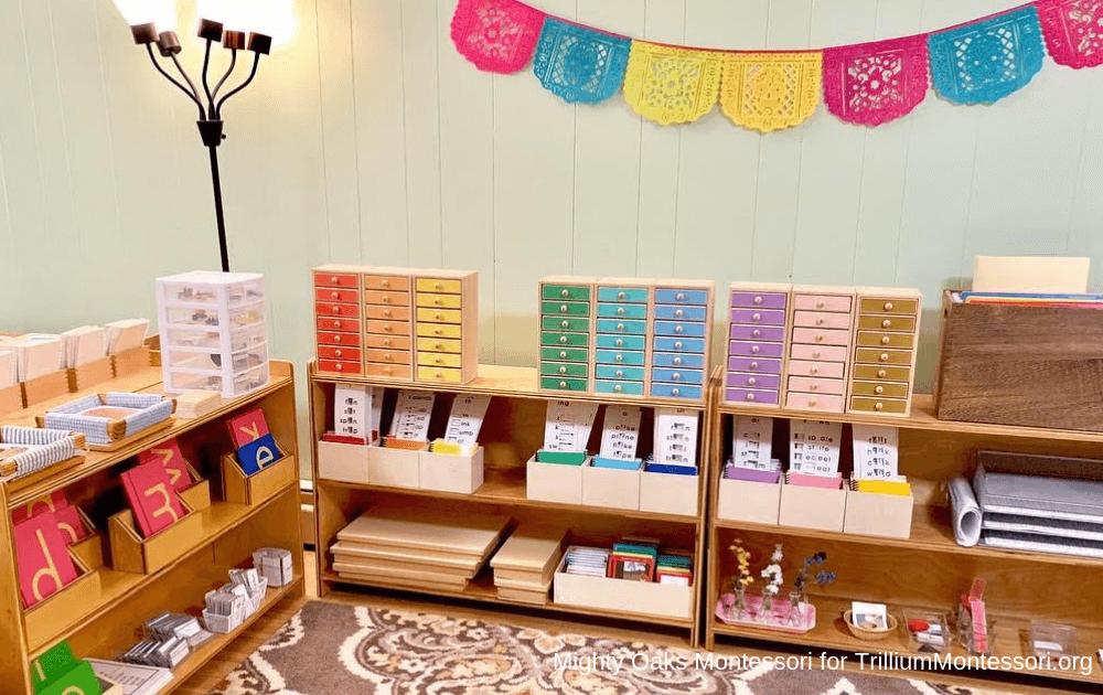 Erin's Montessori Classroom Setup Language Area with Waseca Reading Drawers