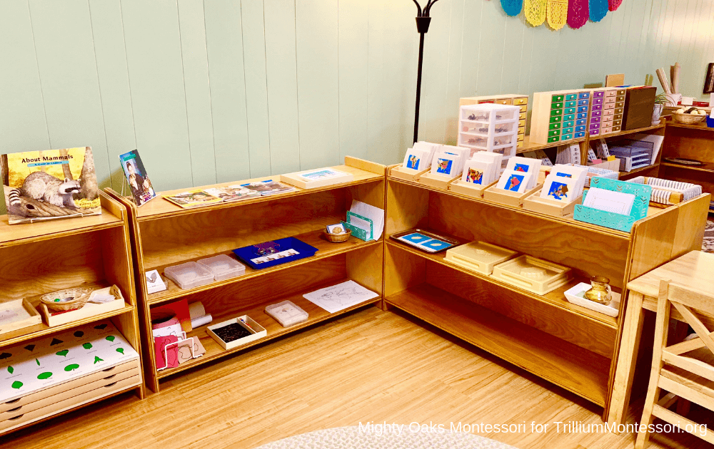 Erin's Montessori Classroom Setup Science and Geography Area
