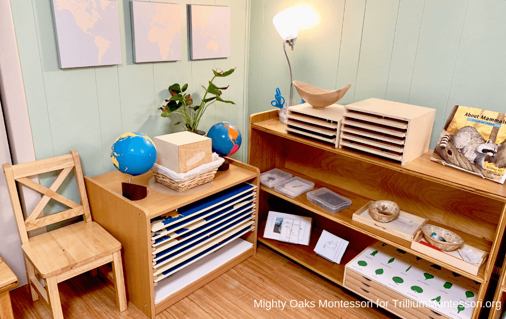 Erin's Montessori Classroom Setup Science and Map Cabinet