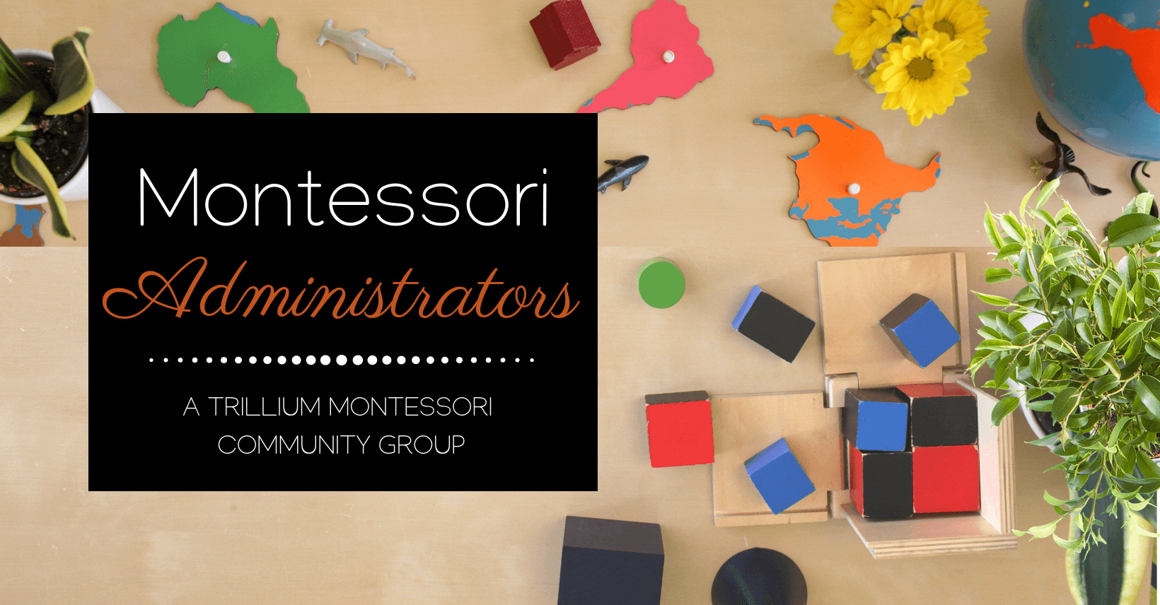 Join a group for Montessori Administrators and School Leaders
