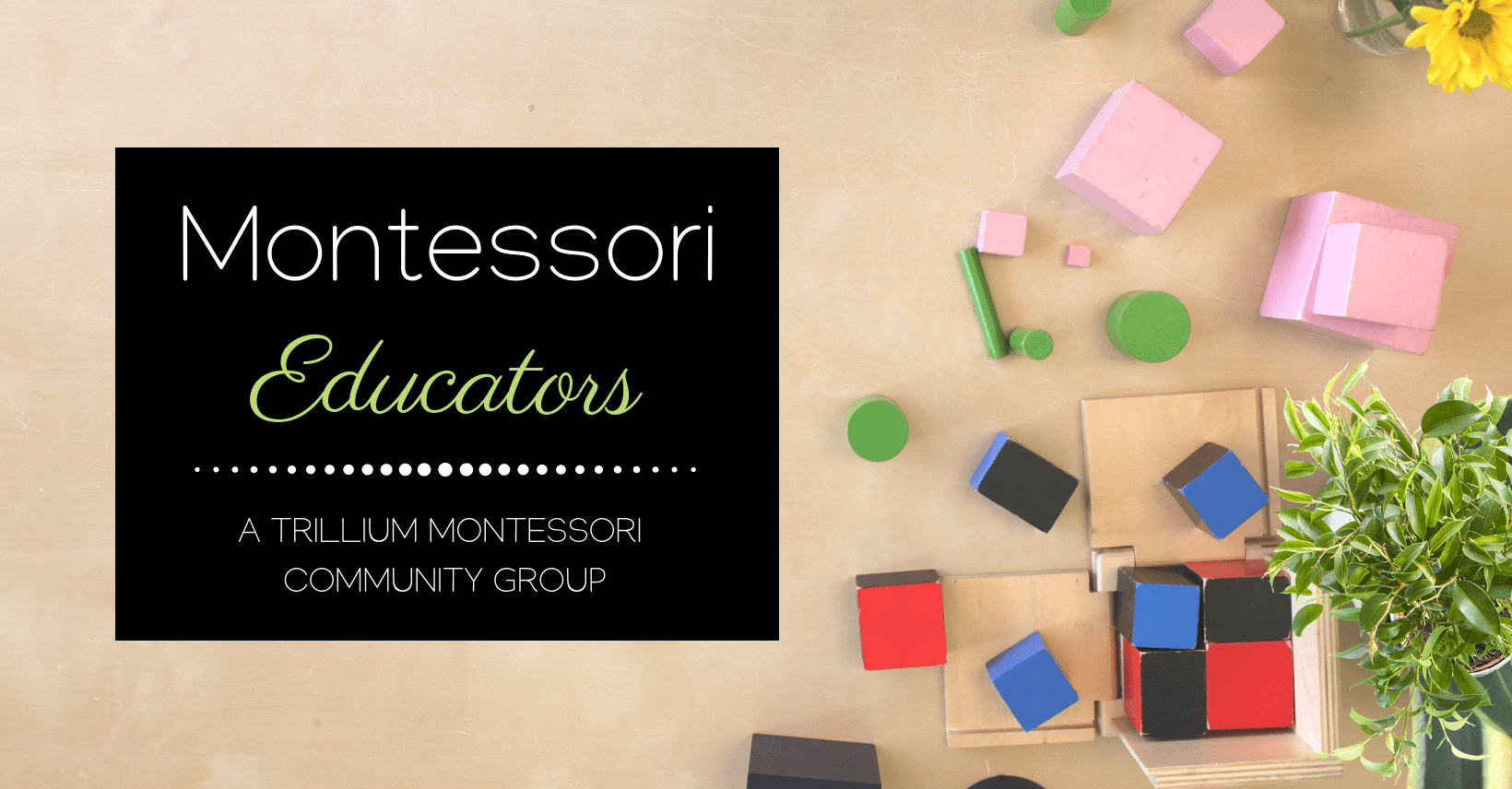 Join a discussion group for Montessori educators, teachers, parents, and anyone interested in Montessori