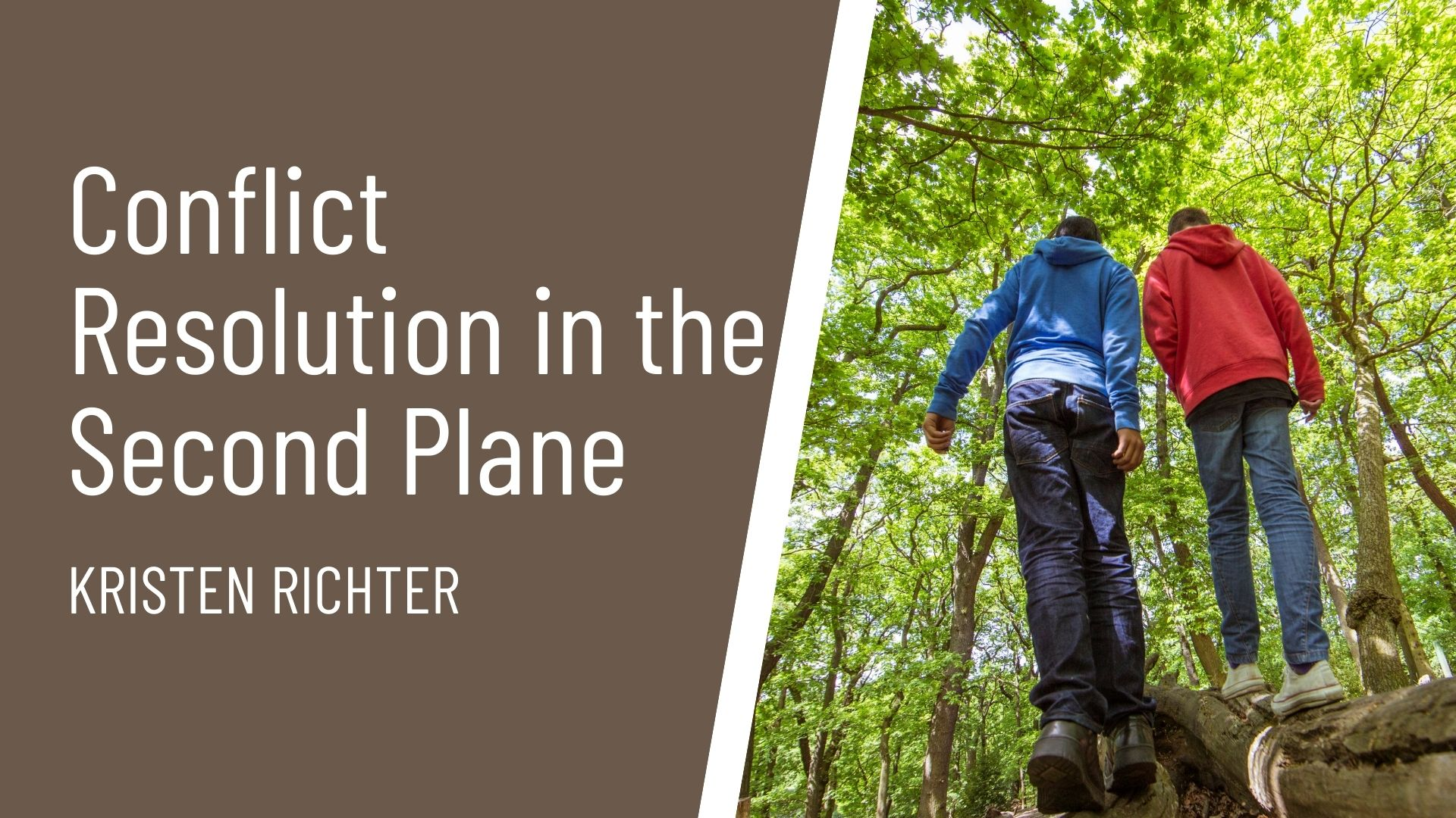 Conflict Resolution Second Plane course thumbnail