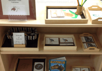 organize-your-montessori-class